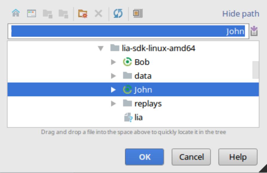 Using an IDE - Lia Docs